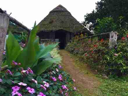 Ayahuasca retreat sanctuary